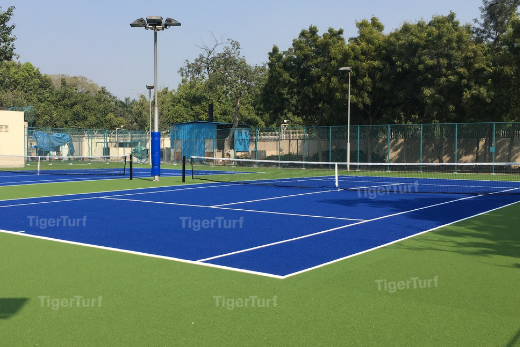 Altius Sports - Embassy of Japan in India